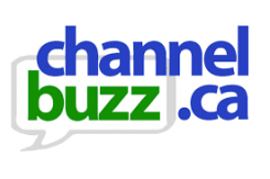 ChannelBuzz covers Meta Networks first partner program