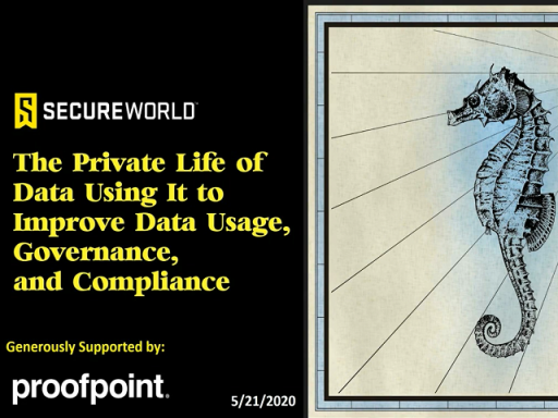 The Private Life of Data: Using It to Improve Data Usage, Governance and Compliance