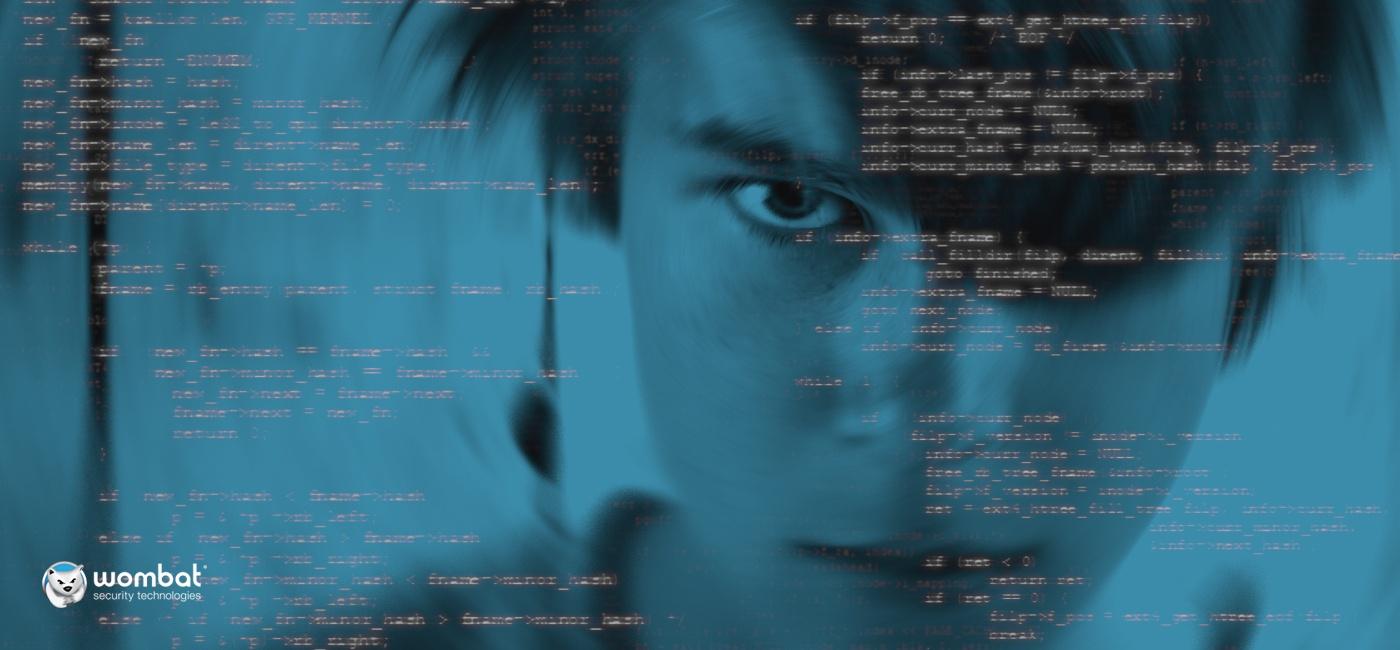 Wombat-Blog-Teen-Hacking-Threat-March-2018.jpg